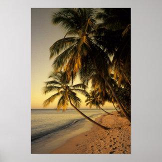Playa en la puesta del sol, Trinidad Póster