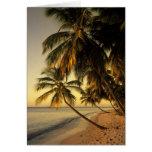 Playa en la puesta del sol, Trinidad Tarjeta De Felicitación