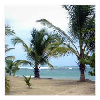 Playa en la República Dominicana Anuncio Personalizado