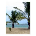 Playa en la República Dominicana Postal