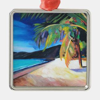 Playa en las Islas Vírgenes de St Thomas los Ornamentos De Reyes Magos