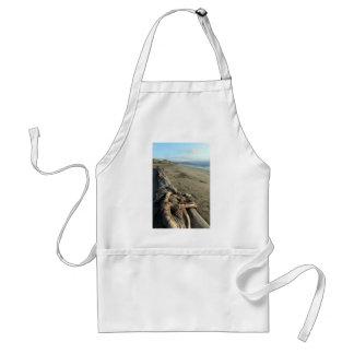 Playa escénica delantales