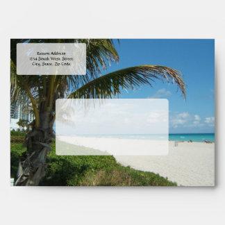 Playa escénica, rama lateral de la palma sobres