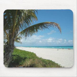 Playa escénica, rama lateral de la palma tapete de ratones