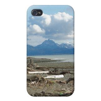 Playa fantástica de Alaska del home run iPhone 4 Protector