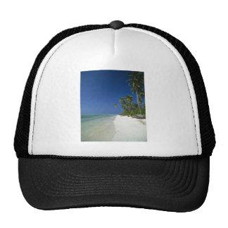 Playa franjada palma gorro