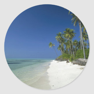 Playa franjada palma etiquetas