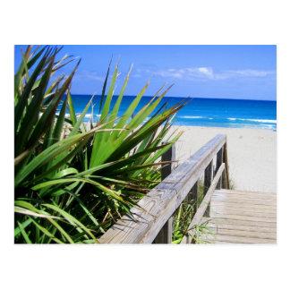 Playa la Florida de Juno Tarjetas Postales