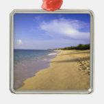 Playa larga de la bahía de Baie Longue, San Adorno Navideño Cuadrado De Metal