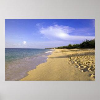 Playa larga de la bahía de Baie Longue San Martín Posters