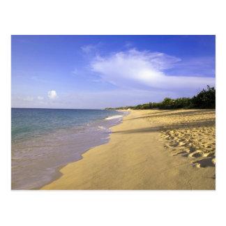 Playa larga de la bahía de Baie Longue, San Martín Tarjeta Postal
