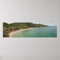 Playa Manzanillo Daisy Venezuela Poster