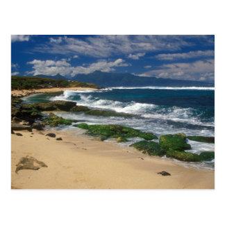 Playa Maui Hawaii de Hookipa Postal