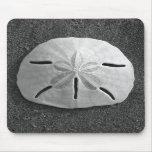 Playa Mousepad de la arena del Seashell del dólar  Tapetes De Raton