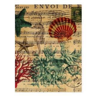 playa náutica femenina de las estrellas de mar de tarjetas postales