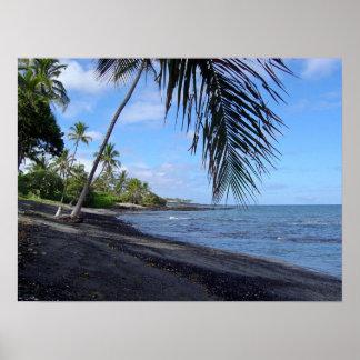 Playa negra tropical de Hawaii Posters