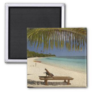Playa, palmeras y ocioso imán para frigorífico