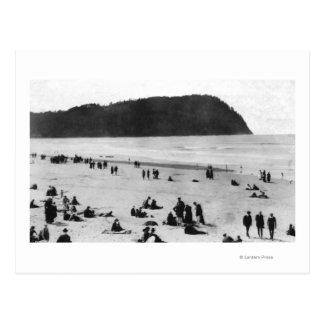 Playa playa de Oregon y cabeza de Tillamook Postales