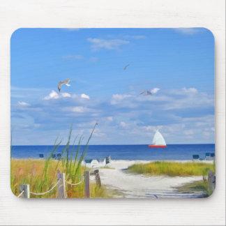 Playa, playa, y pájaros de la Florida Mouse Pads