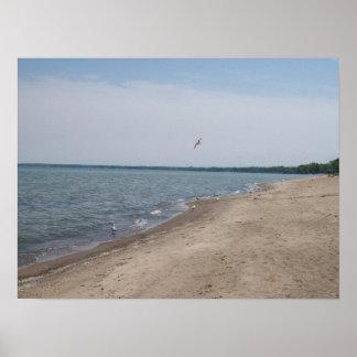 Playa poster de Huron, Ohio de la placa de níquel