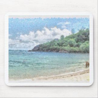 Playa preciosa en las Seychelles en el Océano Tapetes De Ratón