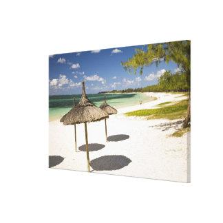 Playa pública de la yegua de la belleza, Mauricio  Impresiones En Lona Estiradas