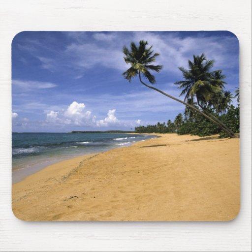 Playa Puerto Rico 2 Alfombrilla De Ratón