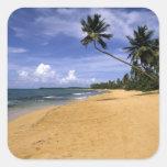 Playa Puerto Rico 2 Colcomanias Cuadradases