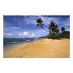Playa Puerto Rico 2 Impresiones Fotográficas