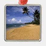 Playa Puerto Rico 2 Ornamentos De Navidad