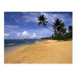 Playa Puerto Rico 2 Postal