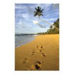 Playa Puerto Rico Cojinete