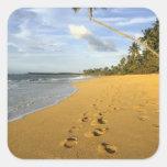 Playa Puerto Rico Colcomania Cuadrada