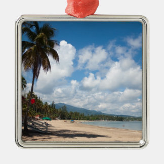 Playa Puerto Rico de Luquillo Ornatos