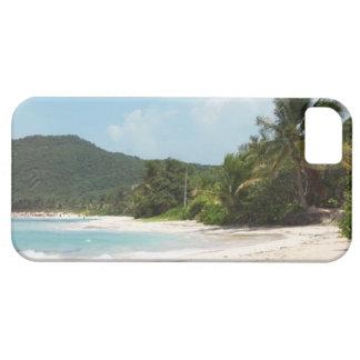 Playa Puerto Rico del flamenco de Culebra iPhone 5 Fundas