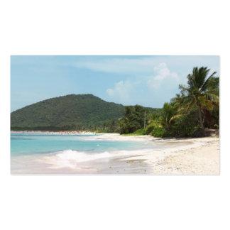 Playa Puerto Rico del flamenco de Culebra Tarjetas De Visita