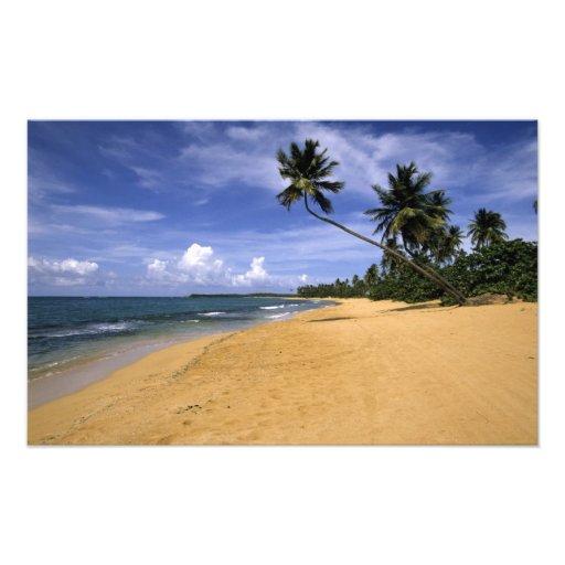 Playa Puerto Rico Fotografía