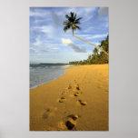 Playa Puerto Rico Poster