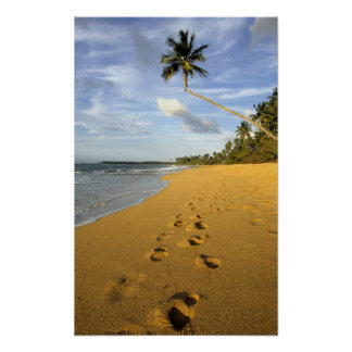 Playa Puerto Rico Póster