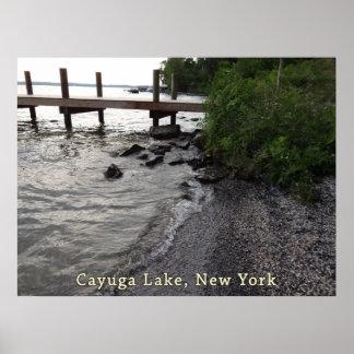 Playa rocosa del lago Cayuga Póster