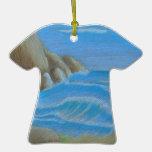 Playa rocosa ornato