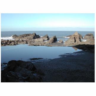 Playa rocosa. Vista costera escénica Adorno Fotoescultura