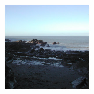 Playa rocosa Vista costera escénica Esculturas Fotográficas