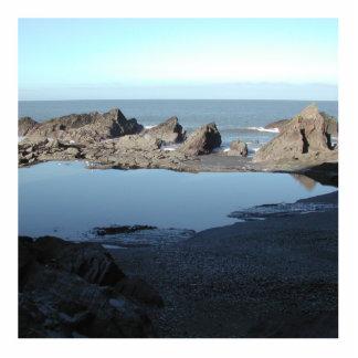 Playa rocosa Vista costera escénica Esculturas Fotograficas