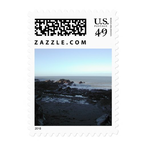 Playa rocosa. Vista costera escénica Sellos