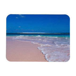 Playa rosada de la arena en la bahía de la concha, imán de vinilo