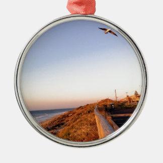 Playa Seagul del halcón Adorno Redondo Plateado