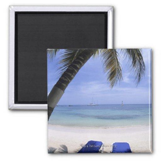 Playa, sillón, palmera, horizonte encima imán cuadrado