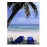 Playa, sillón, palmera, horizonte encima postales