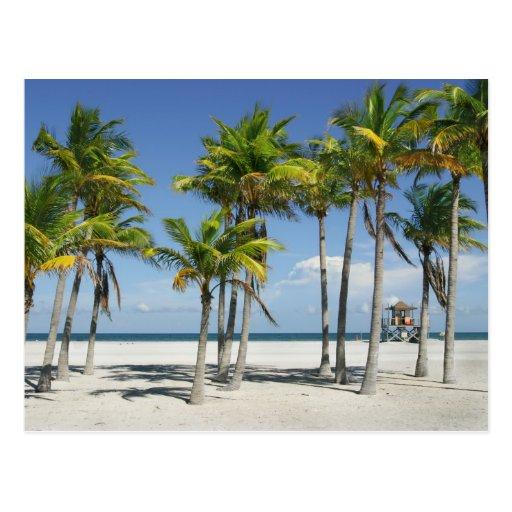 Playa soleada hermosa en postal de la tarde